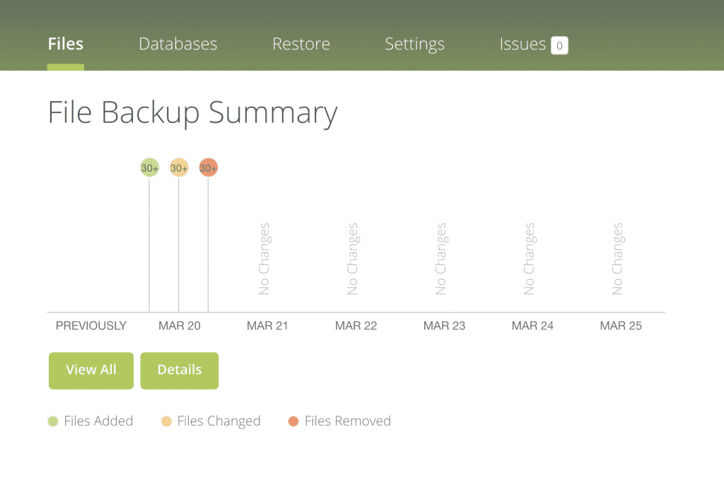 Illustration of File Backup Summary